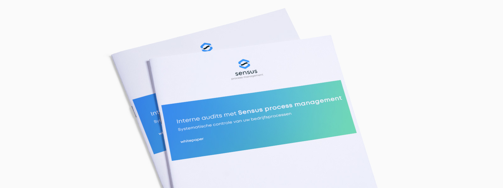 Sensus whitepaper HRM enquete